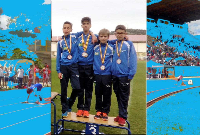 Cto de Castilla y Leon Infantil Sub 14  RESULTADOS